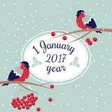 New Year and Merry Christmas Bullfinch. New Year Bullfinch and New Year Rowan Tree Branch NewYear Wish Postcard with Bullfinches,Rowan Branches and Oval Frame Royalty Free Stock Photos
