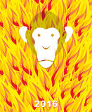 New year 2016. Monkey on flame background. Year of  Fire Monkey Royalty Free Stock Photo