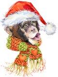 New Year monkey Santa Clause graphics,  monkey chimpanzee illustration Stock Image