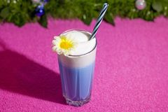 New year non-alcoholic and alcoholic drinks for children and adults. Healthy cocktails with vitamins stock photo