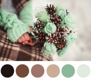 New year palette royalty free stock image