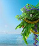 New Year palm tree with decoration concept holiday background Stock Image