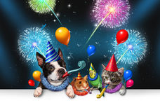 New Year Pet Celebration Stock Images