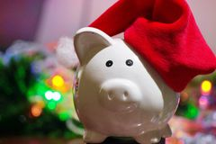 New year pig in the red hat and light on the background. stock photo