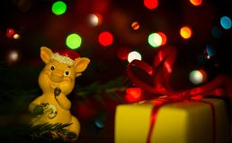 The New Year 2019 is the year of the pig. A New Year`s gift and a toy pig in the branches of the Christmas tree with colorful garlands stock images