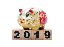 New Year 2019:  piggy bank and building blocks Stock Image