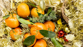 New Year postcard with mandarines Stock Photo