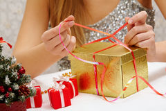 New Year preparations Royalty Free Stock Photos