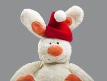 New year rabbit Stock Photo