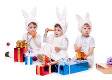 New year rabbit Royalty Free Stock Images