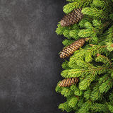New Year`s background: fluffy green fir branches on a dark coal background under the inscription with a free space under Stock Photos