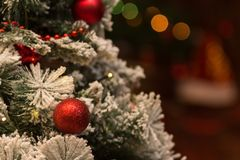 New Year`s background. Red ball on the Christmas tree. Stock Images