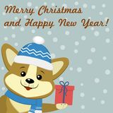 Christmas card with cute dog Corgi in blue hat and scarf Royalty Free Stock Photos