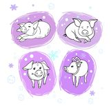 New Year`s cheerful pig stock illustration