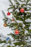 The New Year's decorated pine in snow Stock Photos