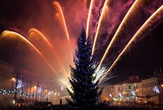 New Year's Eve fireworks. Behind  Christmas tree Royalty Free Stock Photography