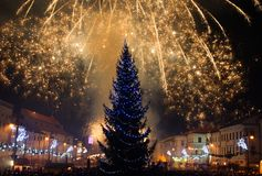 New Year's Eve fireworks. Behind  Christmas tree Stock Image