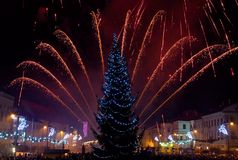 New Year's Eve fireworks. Behind  Christmas tree Stock Photos