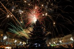 New Year's Eve fireworks. Behind  Christmas tree Royalty Free Stock Photo