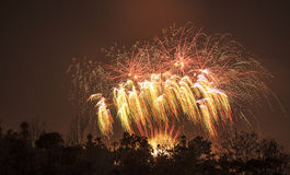 New Year's fireworks Royalty Free Stock Photos