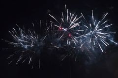 New Year's fireworks Stock Images