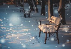 New year`s magic. Snow in a deserted Park Royalty Free Stock Photos