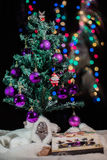 New Year's mask against fur-tree branches with cones Stock Photo