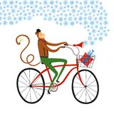 New year's Monkey cyclist illustration. Vector illustration with cute monkey on city bicycle with gift box in basket and doodle snowflakes. New Year's symbol for Stock Images