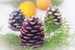 New Year`s multicolored red blue shiny cones on green branches of a Christmas tree along with tangerines stock photography