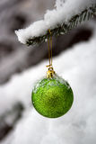 New Year's ornament on a branch. With snow Royalty Free Stock Photography
