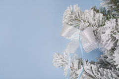 New Year`s photo. the New Year`s tree with imitation of snow is decorated with toyson a blue background. Stock Images