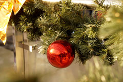 New Year's spheres on fir-tree branches Royalty Free Stock Photos