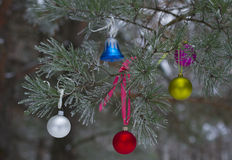 New Year's toy on branch in natural winter forest Royalty Free Stock Images