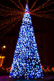New Year's tree made from bokeh lights Stock Image