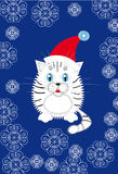 New Year's white tiger cub in a Santa hat. New Year's Dark Blue background with a white tiger cub in a Santa hat and a snowflake Royalty Free Stock Photos