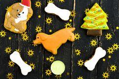 New Year`s yellow dog. Cookies with chocolate icing. Royalty Free Stock Photo