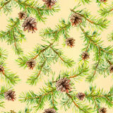 New year seamless pattern with branches of christmas tree Royalty Free Stock Images