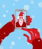 New year selfie. Monkey hooded Santa Claus makes a photo on a Sm Stock Photo