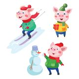 New Year set with pigs, the symbol of 2019. Piggy skiing. Cute pig with a gift. Pig and snowman vector illustration