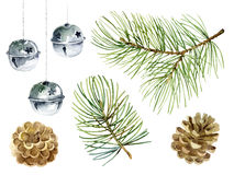 New Year set of pine branches, balls and cones Stock Photos