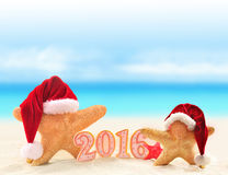 New year 2016 sign with starfish in Santa Claus hat Royalty Free Stock Photos
