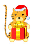 New Year Tiger. Isolated tigger toy with present Royalty Free Stock Photography