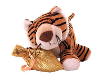 New-year tiger cub with gift. Stock Photography