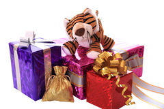 New-year tiger cub with gifts. Royalty Free Stock Photos