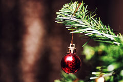 New year tree ball decor Royalty Free Stock Images