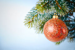New-year tree decoration. New-year tree red decoration on green branch Royalty Free Stock Image