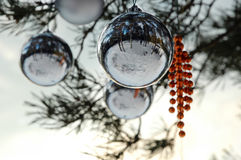 The New-Year tree decorations. Some New Year spheres on a pine branches Stock Photo