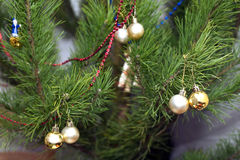 New year tree with round Christmas balls on branches Stock Photos