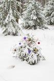 New Year tree Royalty Free Stock Photography