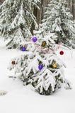 New Year tree Royalty Free Stock Photo
